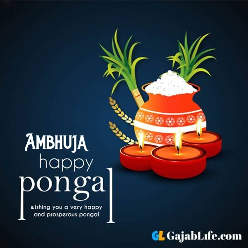 Ambhuja happy pongal wishes images name pictures greeting card in telugu tamil