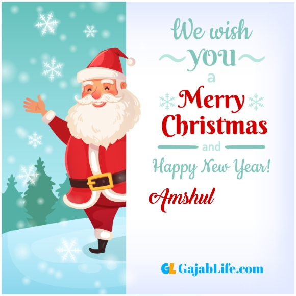 We wish you a merry christmas amshul image card with name and photo